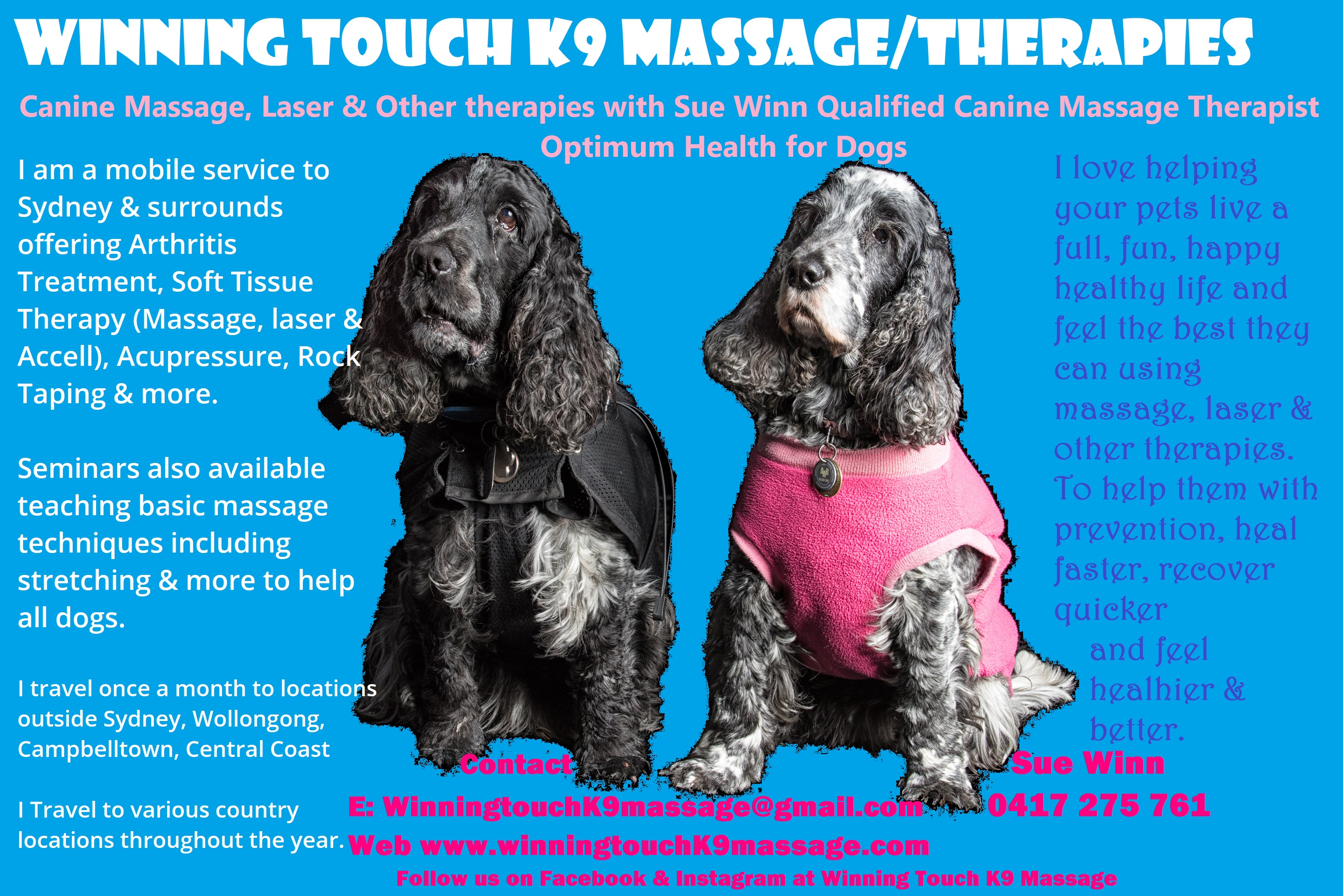 Winning touch K9 massage photo