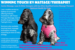 Winning touch K9 massage photo