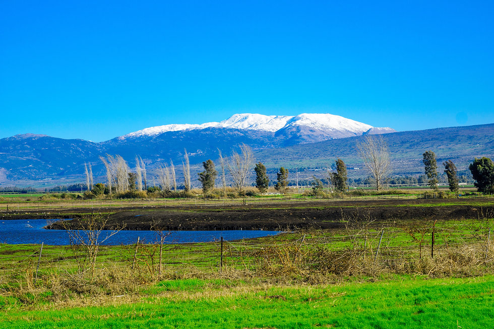 View of the Hula Valley and Mount Hermon
