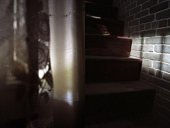 2007_dmv_dm42.jpg