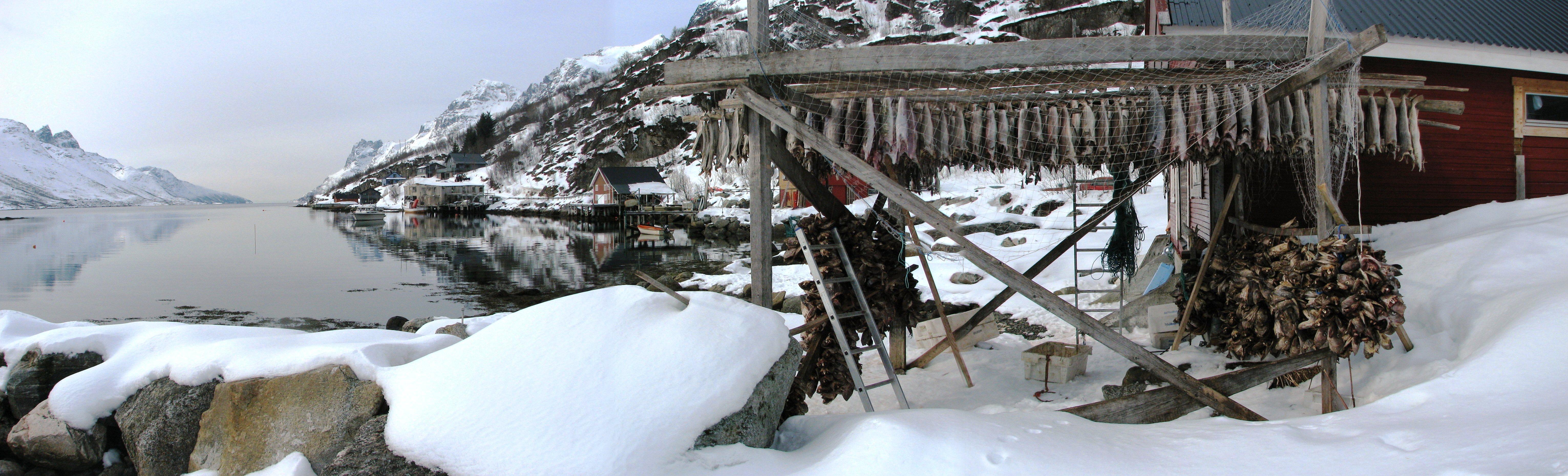 Ersfjord06.jpg