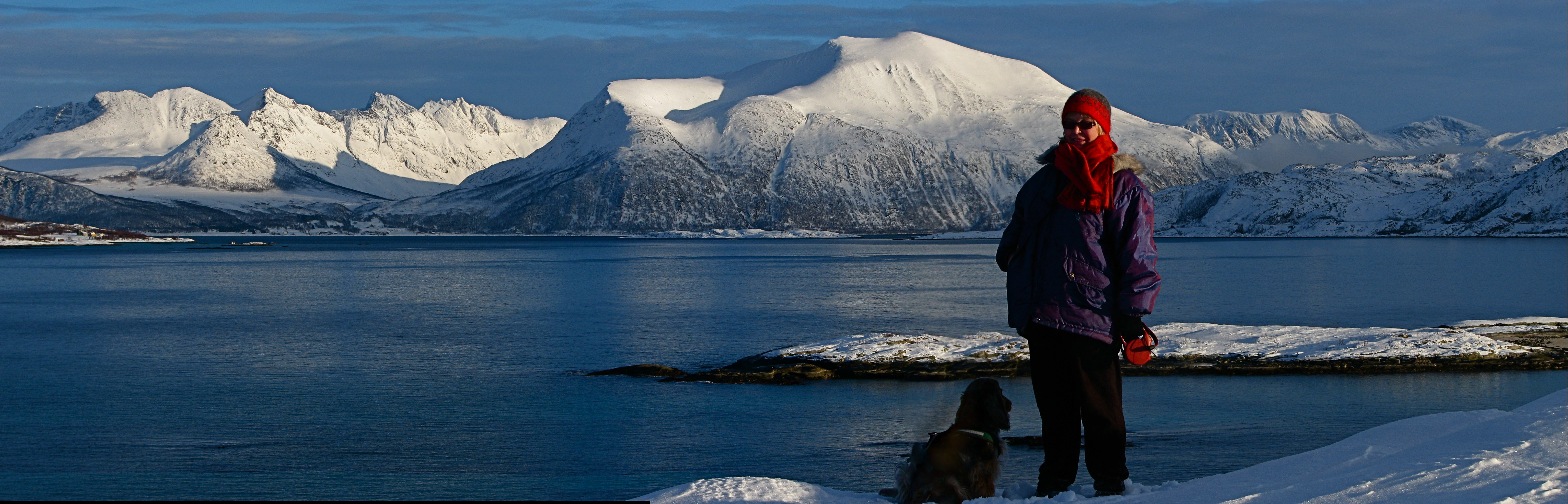 Sommarøya05.JPG