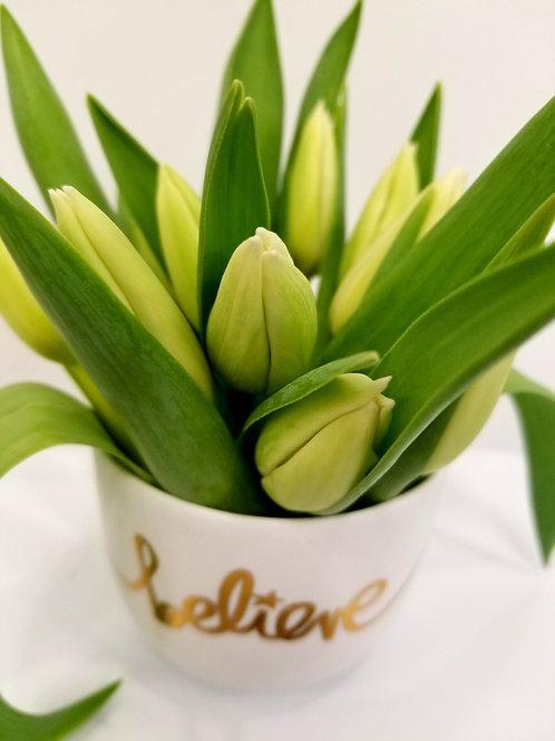 'Believe' Vased Tulips