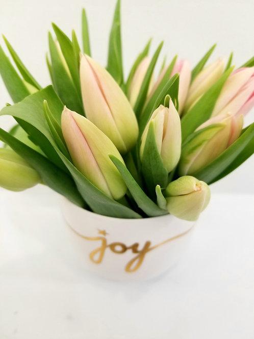 'Joy' Vased Pink Tulips