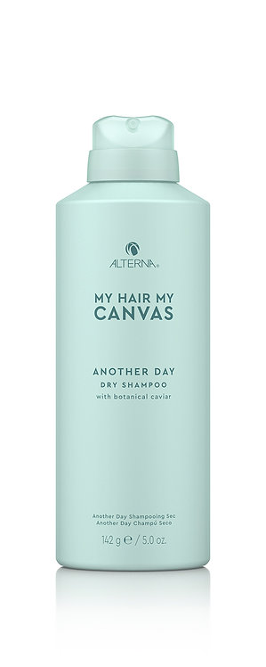 Another Day: Dry Shampoo