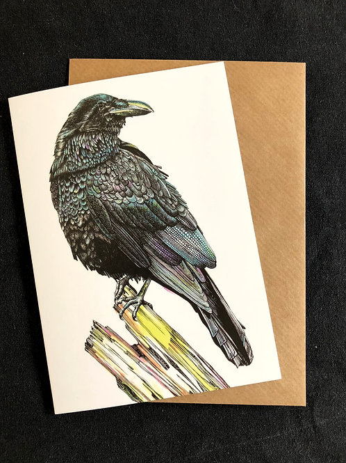 Raven Cards  Code 032