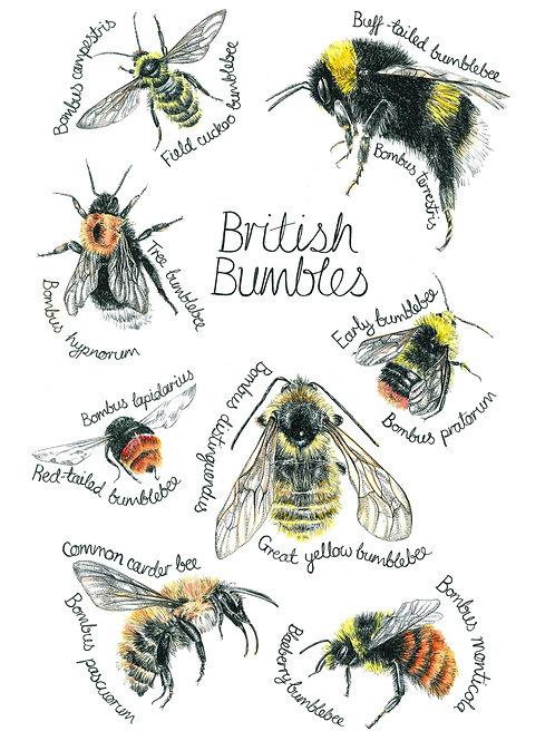 British Bumbles Original Art A3