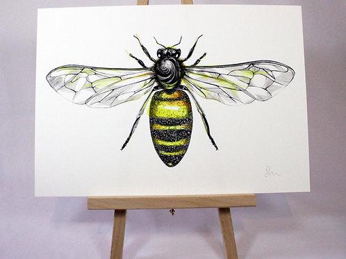 PRWORKA4/A3 Worker Bee Fine Art Print