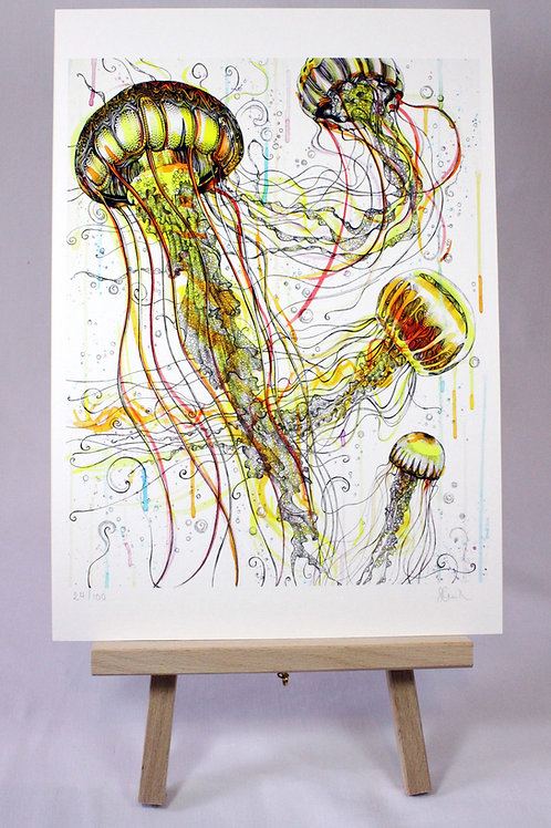 Jellyfish Limited Edition Fine Art Print