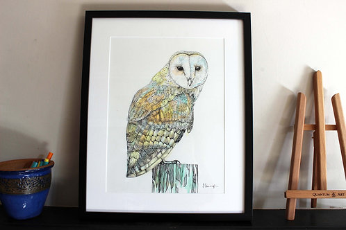 Barn Owl Original Art