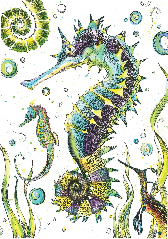 Seahorses web