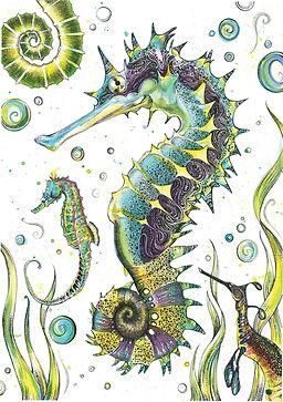 Seahorses web.jpg