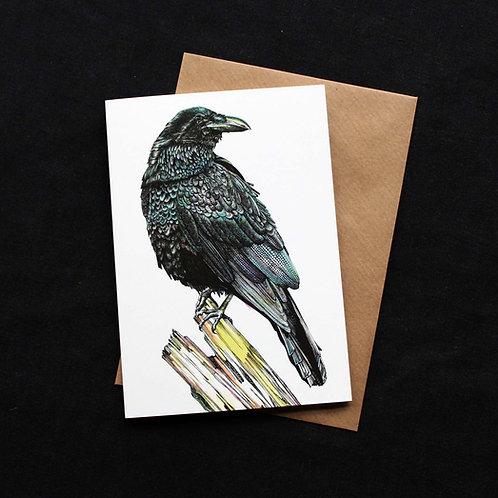 Raven Card