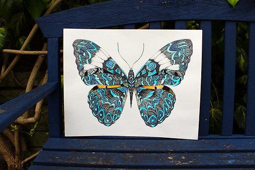 PRGEOBA4/A3 Geometric Butterfly Fine Art Print