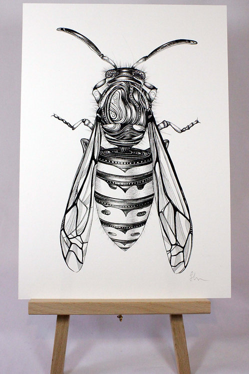 Waspish Fine Art Print