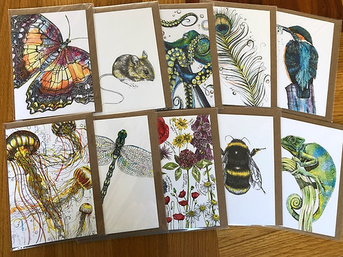 10 Blank Cards Variety Pack for £13