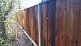 concrete-closeboard-fencing-in-ascot.jpg