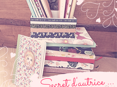 Secret d'autrice: passion carnets