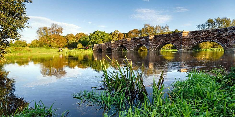 Wimborne paddle