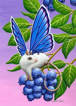 Blueberry Bop