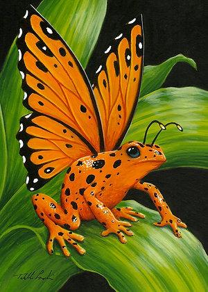 Orange Poison Fairy Frog