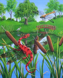 On Dragonfly Pond