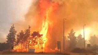 WATCH: The Silent Arson Terror War