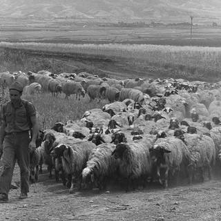 Standing Guard on Jewish Soil