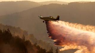 Fire Department Exposes Arab Arson War