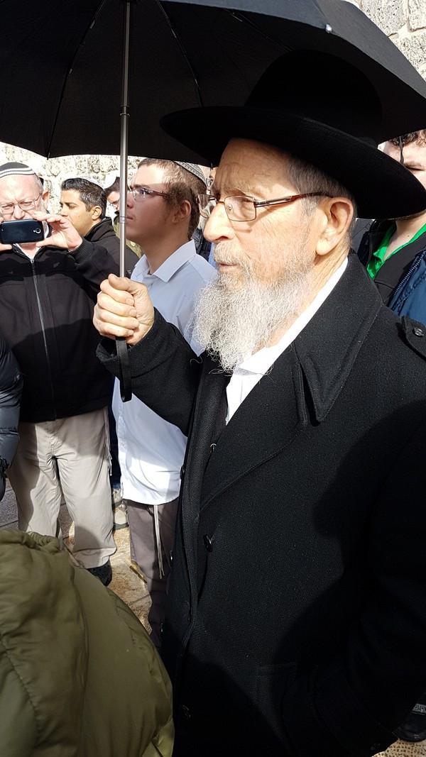 Rabbi Yisrael Ariel (Image credit: Michael Miller)