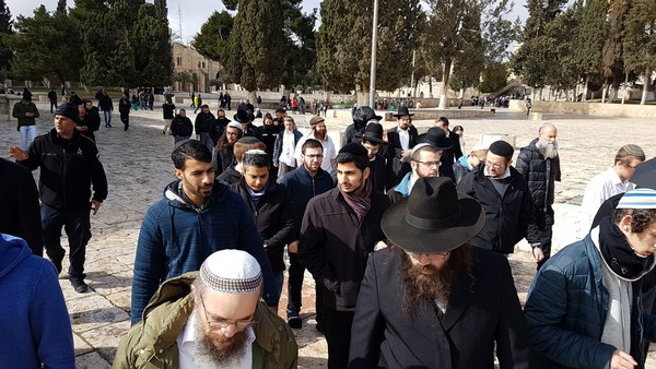 The group of 42 Jews who prayed on the Temple Mount (Image credit: Michael Miller)
