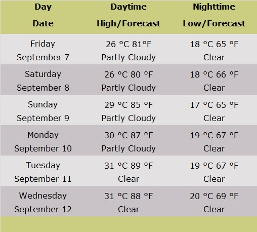 Table of Weather Forecasts