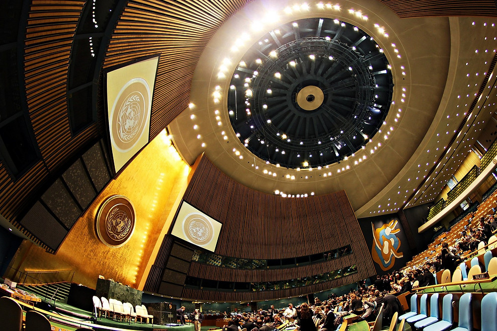 UN General Assembly hall (Image credit: Basil D Soufi (Own work) [CC BY-SA 3.0 (https://creativecommons.org/licenses/by-sa/3.0)], via Wikimedia Commons)