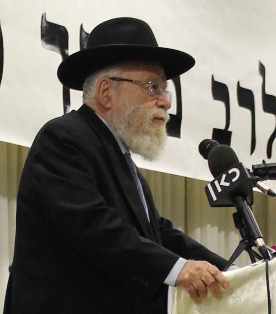 Rabbi Dov Lior (Image credit: N. Sher)