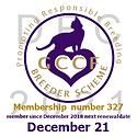 Geniemau GCCF Breeder December 2021 IMG_