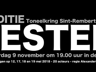 Auditie 'Festen'