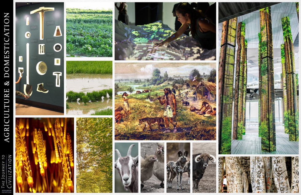 Agriculture & Domestication Mood Board