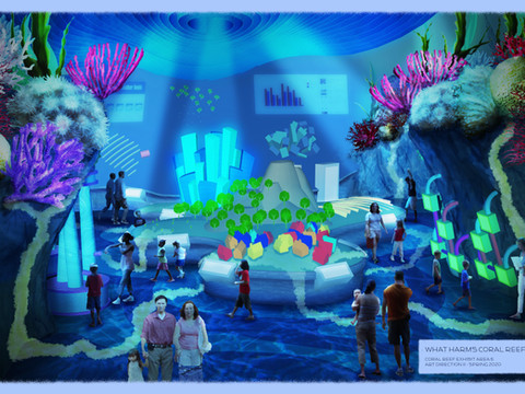 Coral Reef Children's Museum Exhibit