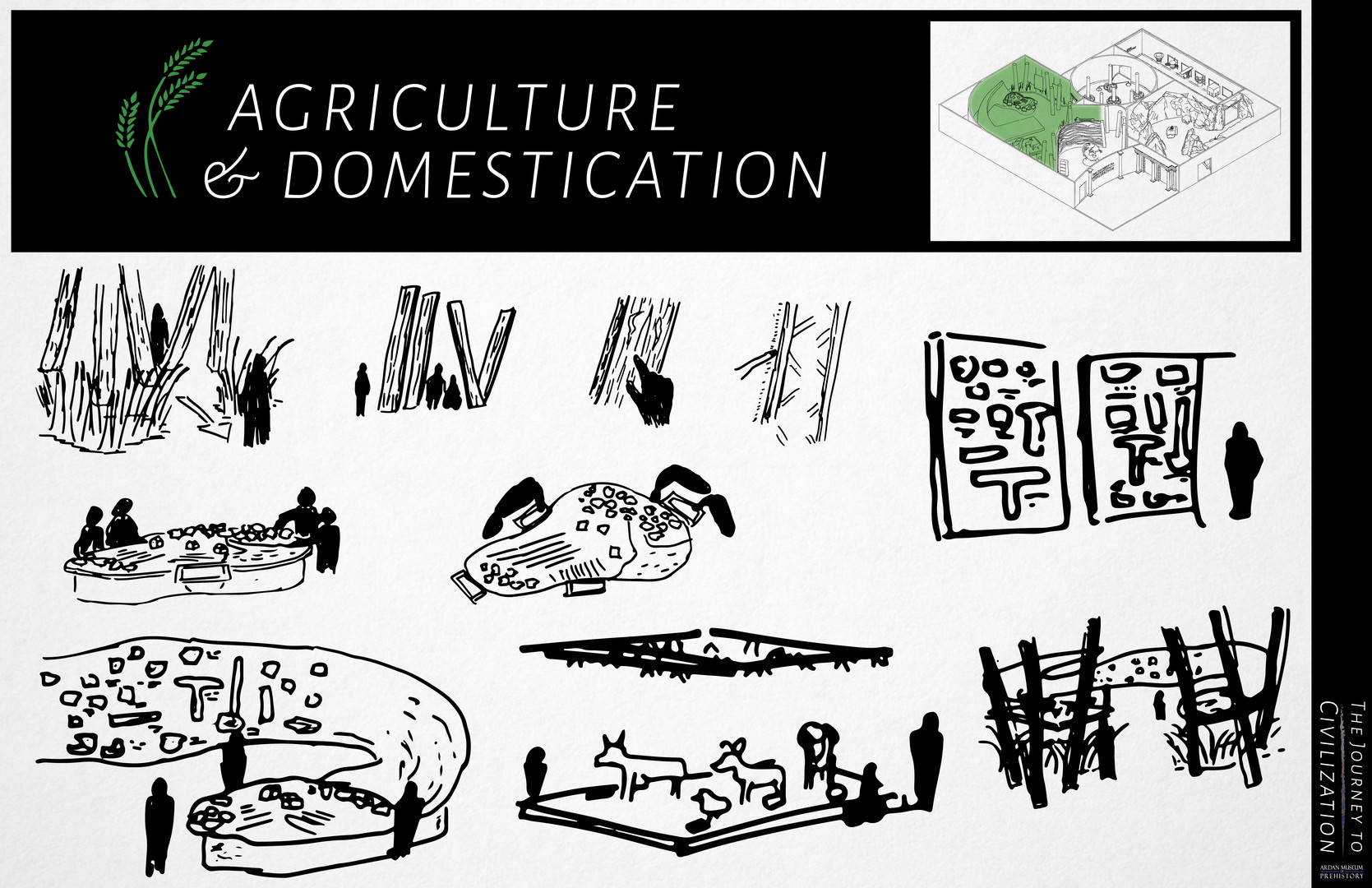 Agriculture & Domestication Sketch Page