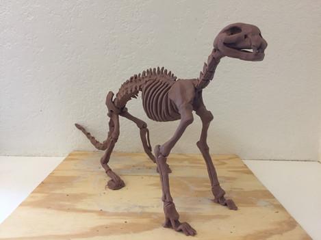 Cat Skeleton Sculpture