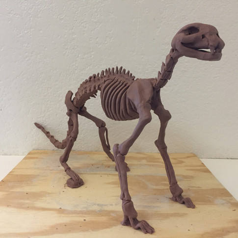 Cat Skeleton Sculpture
