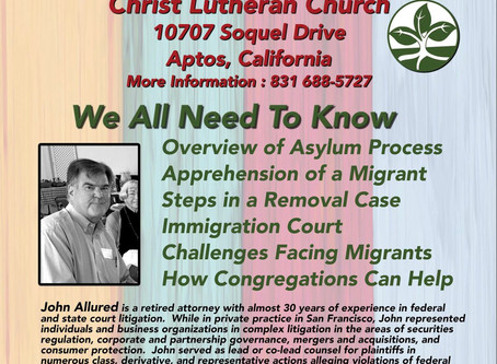 Immigration and the Law