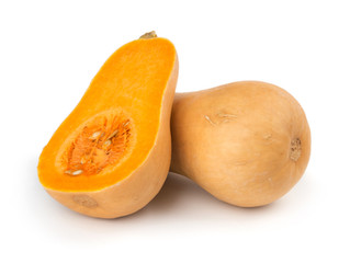 What You Need to Know About Winter Squash