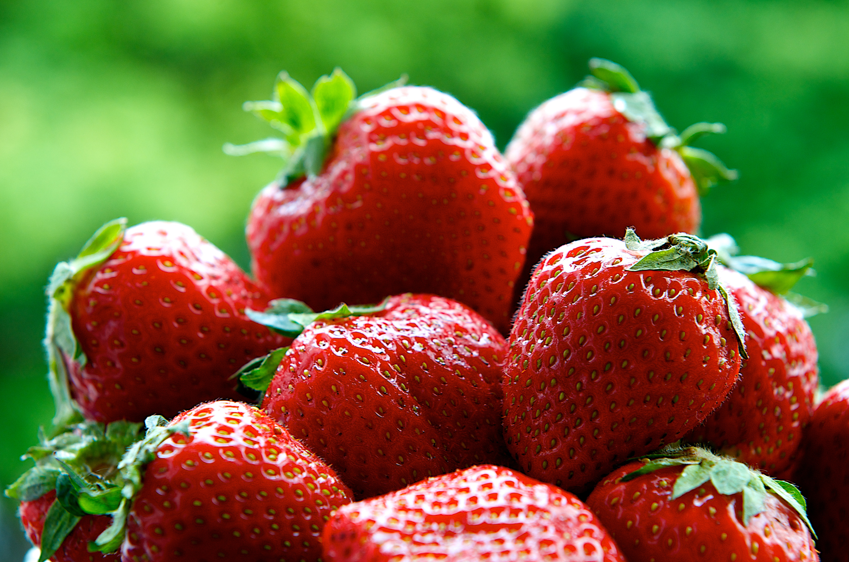 Fresh strawberries on summer with green background, strawberries,seasonal fruits