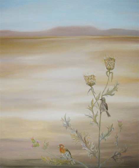 House Finches and Thistles