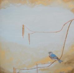 BlueBird Dusk