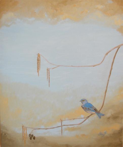 Blue Bird Dusk