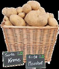 Kartoffelkorb_freigestellt_Marabel_Krone