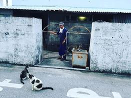 Okinawa Locals