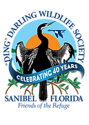 Ding Darling Wildlife Society (40 Years).png